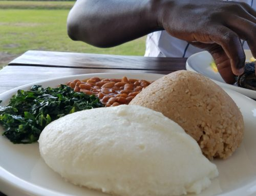 Is Sadza Healthy? ( Sadza AKA Ugali, Nshima, Posho, Fufu, Pap etc.)